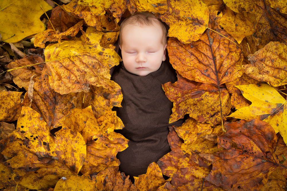 Click image for larger version  Name:10 October-Newborn.jpg Views:49 Size:1.25 MB ID:51421