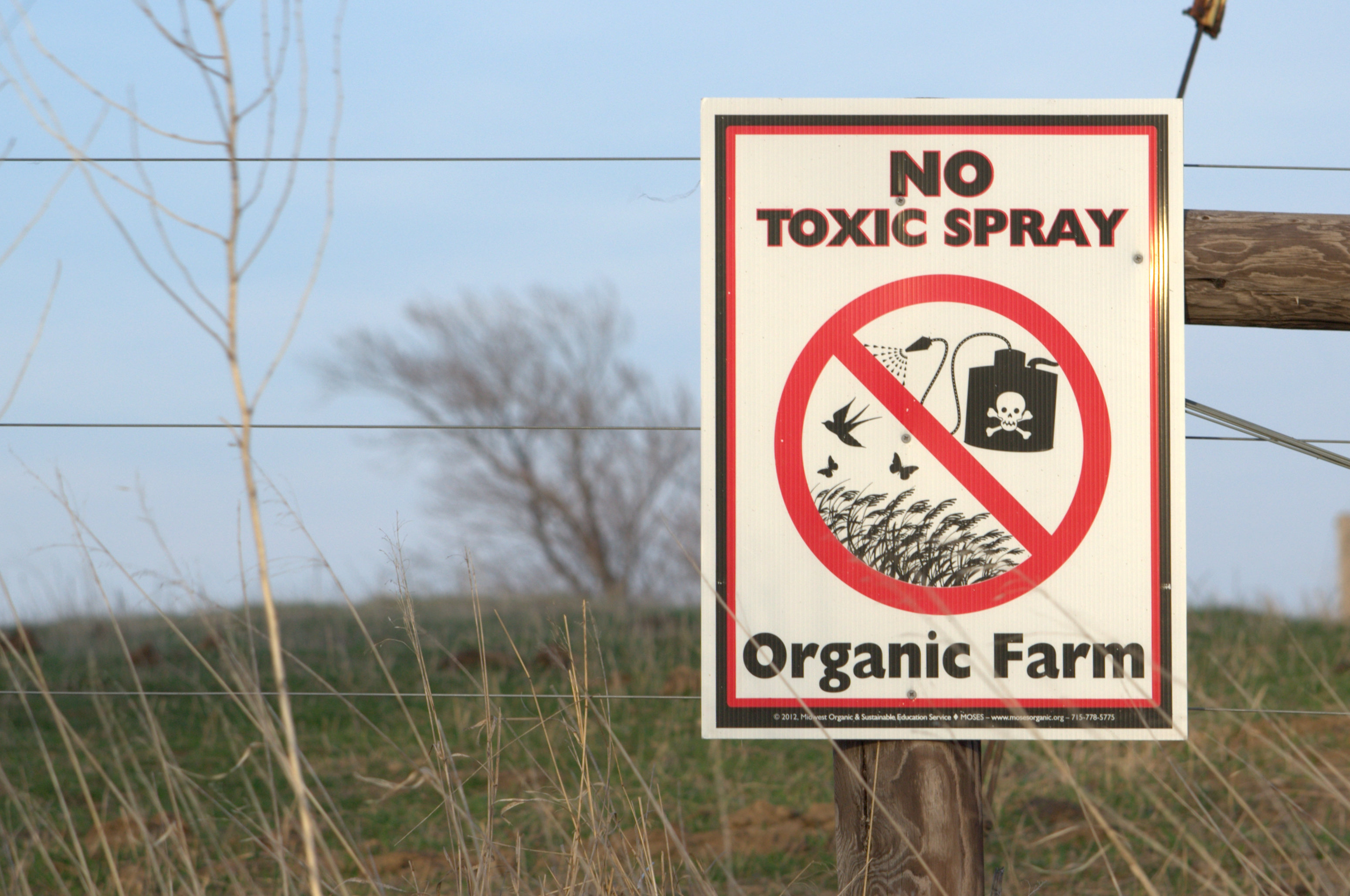 USDA Rule May Lead to Cheaper Organic Produce