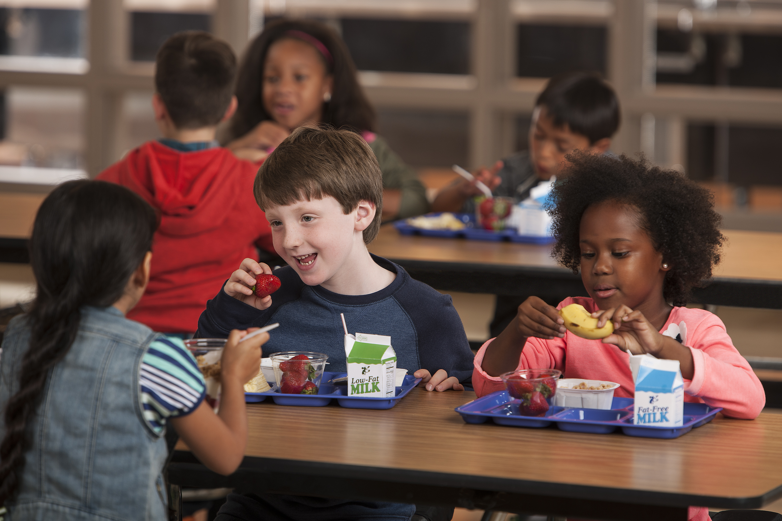 "I spoke with a registered dietitian to get the ""dish"" on school lunches."