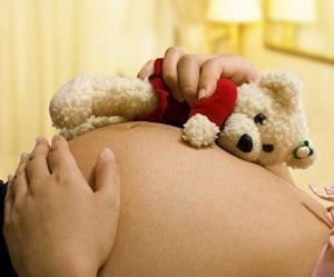 7140fc7c_pregnant_mom_bear