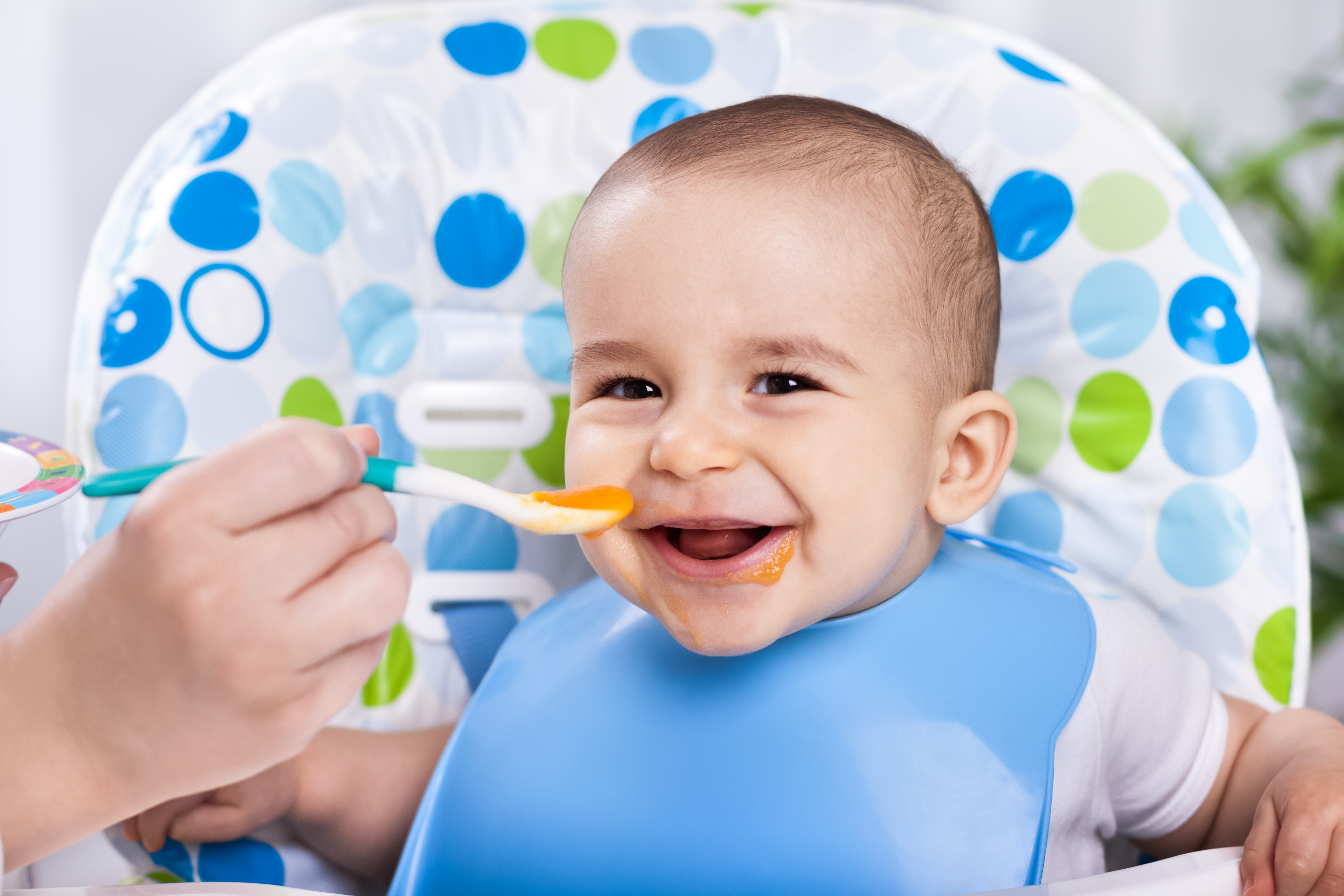 Meal delivery subscription services are all the rage, and now there's an organic one for babies.