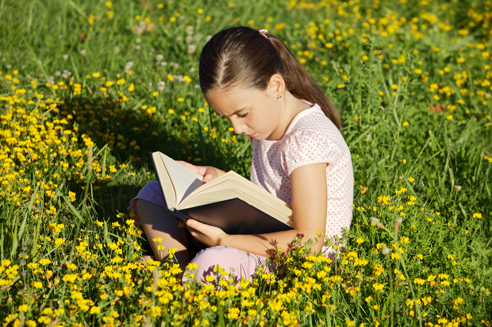 As your child gets older, it can be hard to find appropriate chapter books, especially books with female protagonists.
