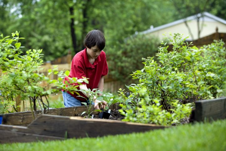 rp_boy-gardening.jpg