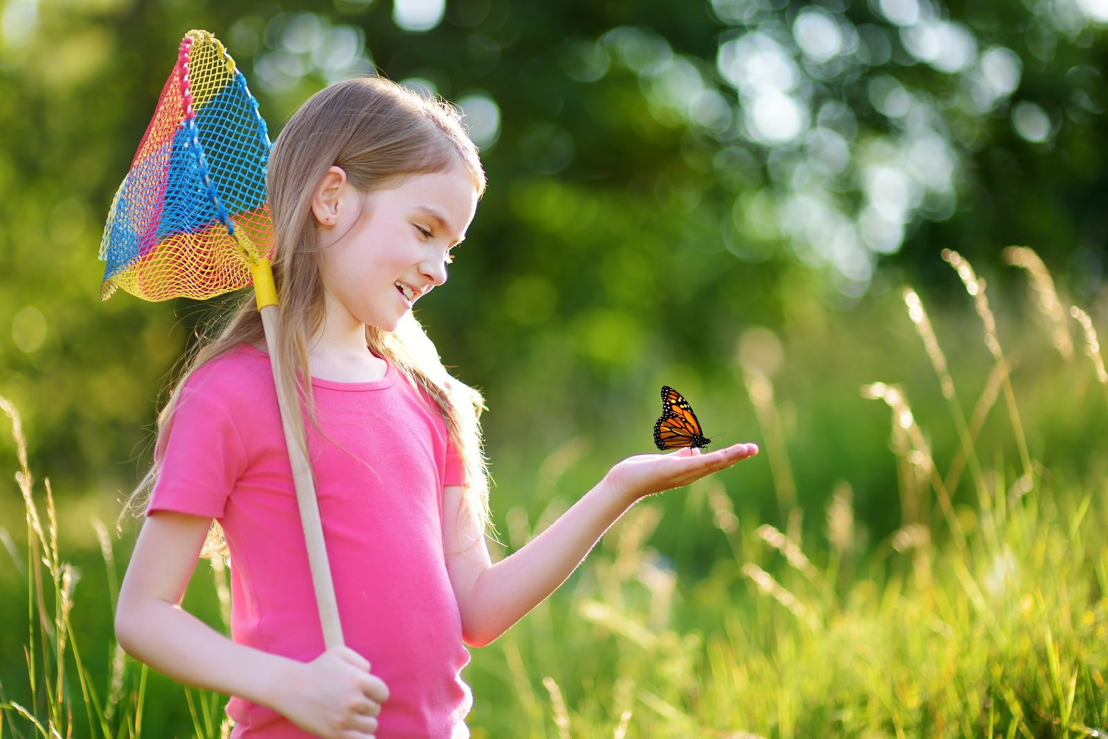 How Insects Can Teach Your Children to Appreciate Nature