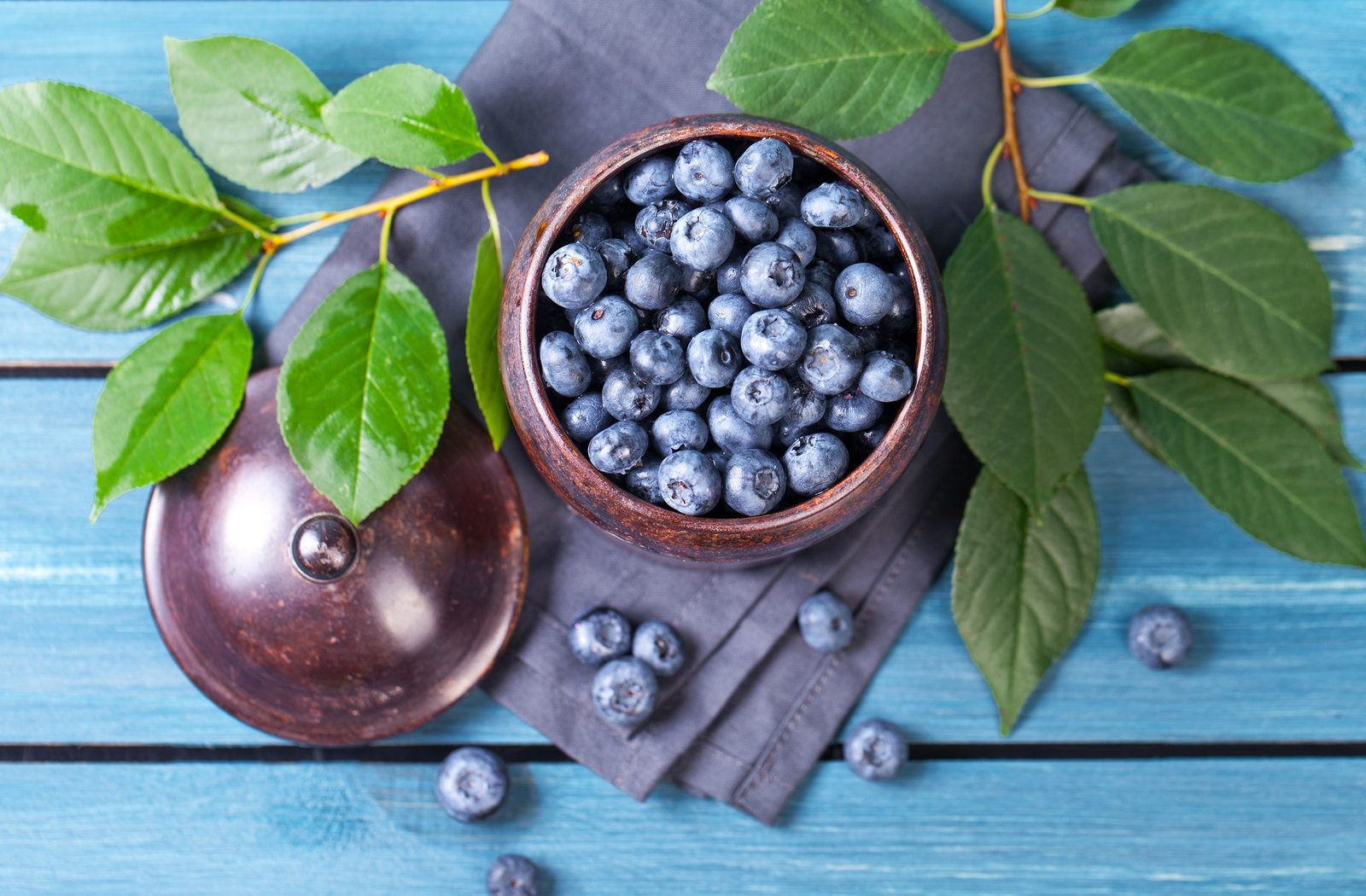 Here are some great ways to celebrate the blueberry with your kiddos.