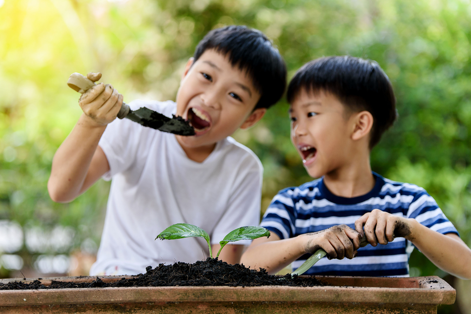 Letting your child eat dirt has surprising benefits.