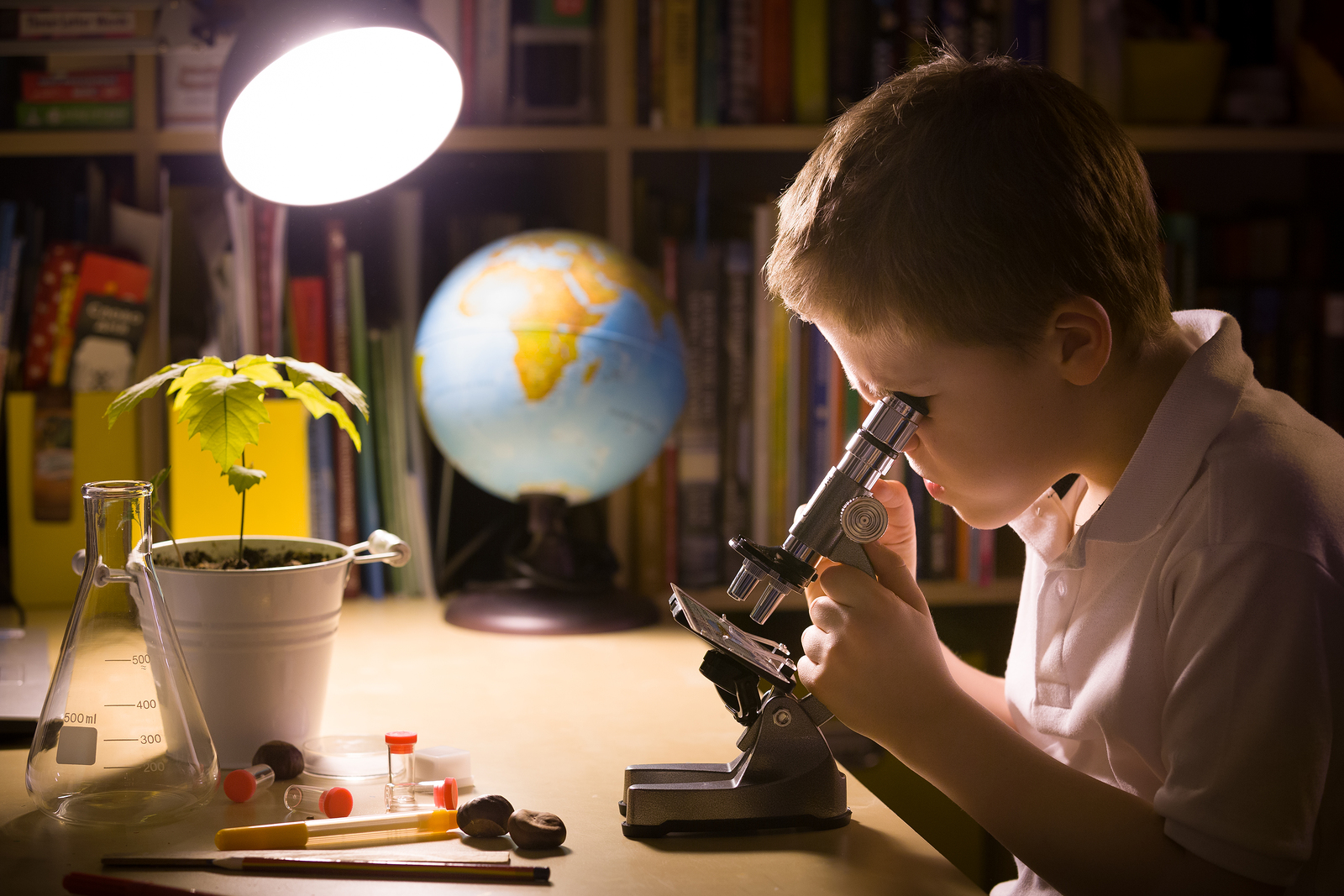 Try These 3 Fun Science Activities With Your Kids