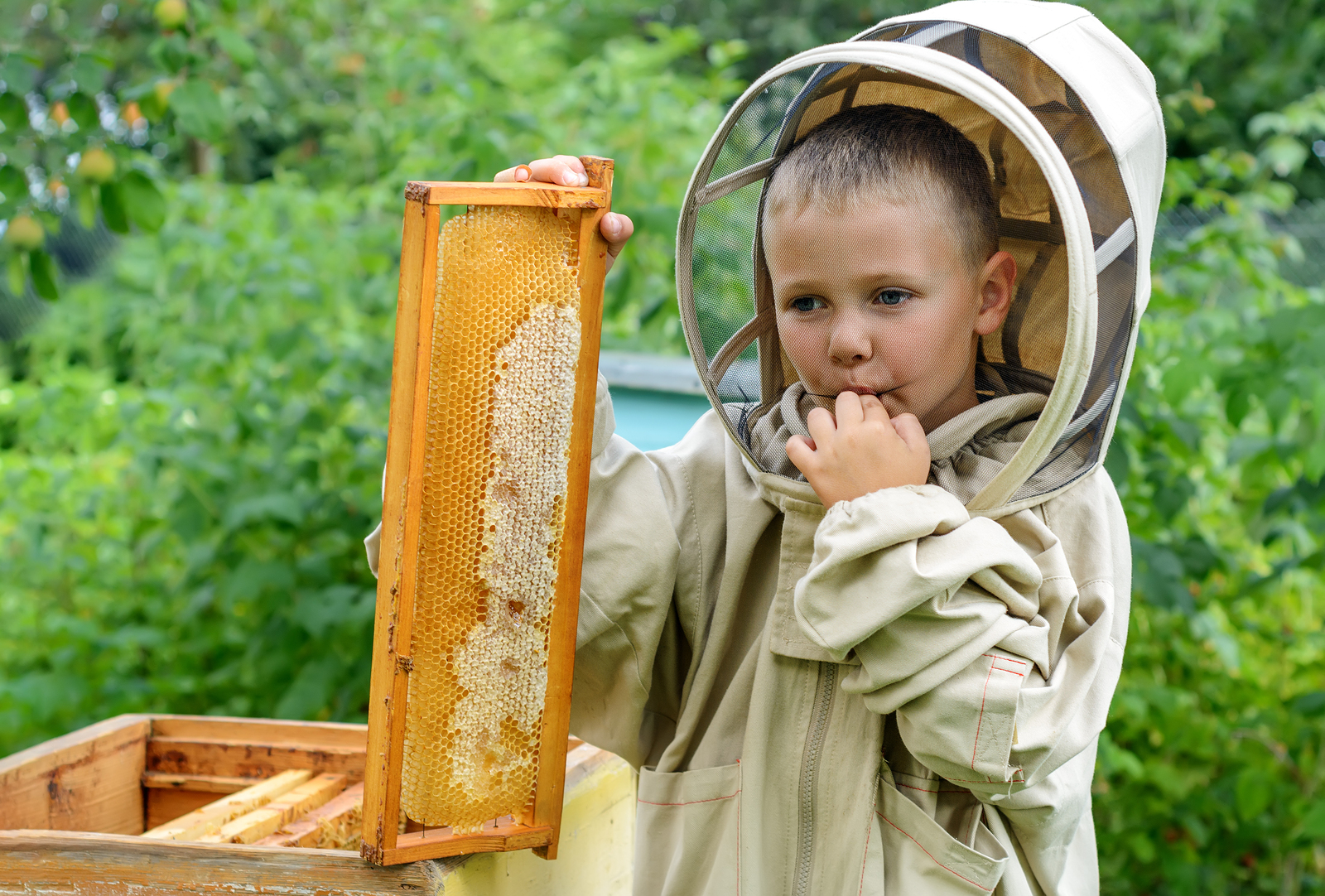 Can raw, local honey really may make a difference?