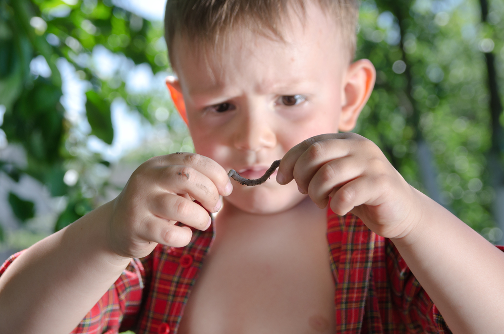 Composting With Worms: Sounds Gross, But Kids Love It