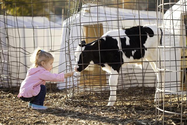 child_farm