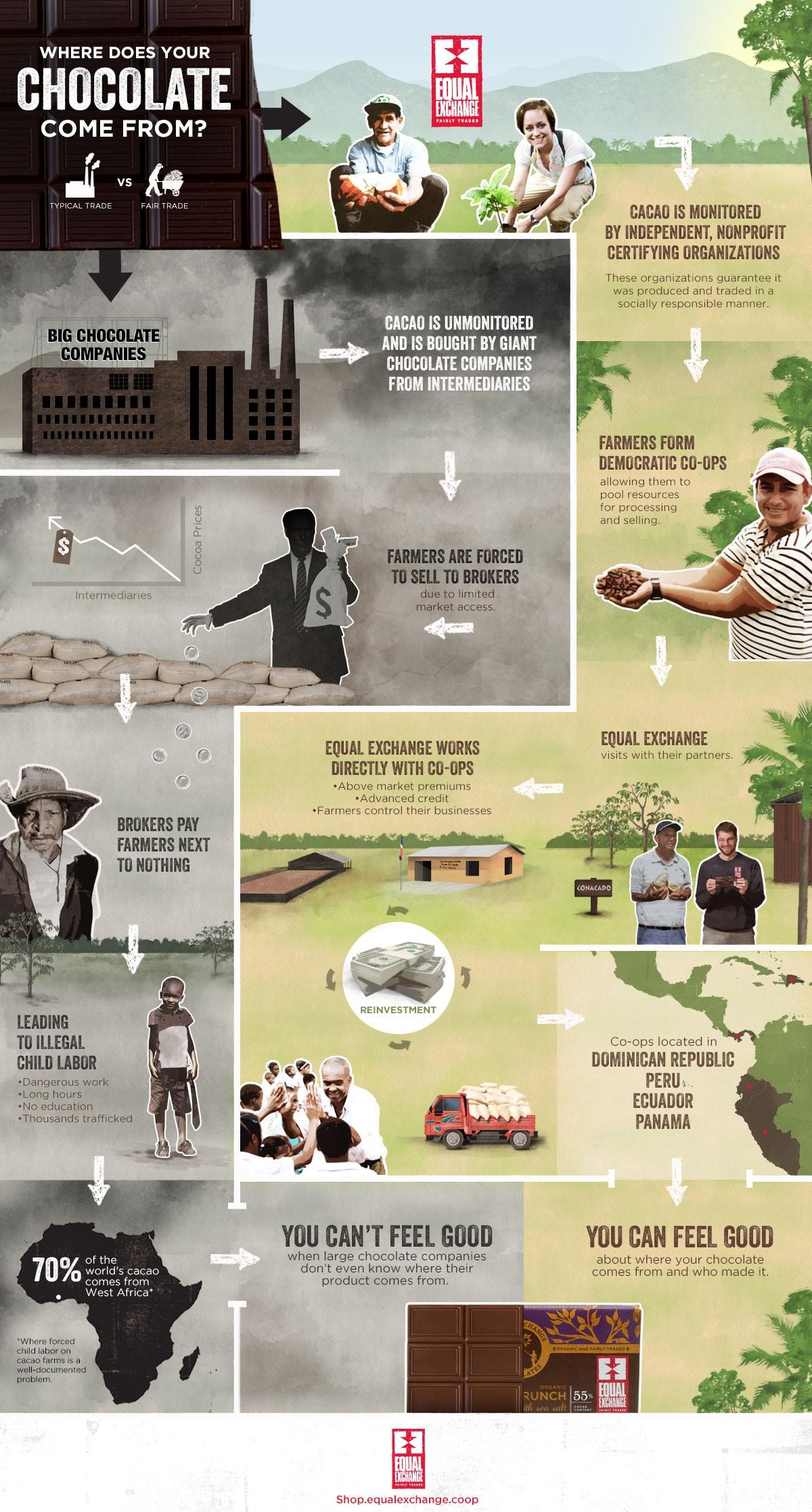 chocolate_infographic