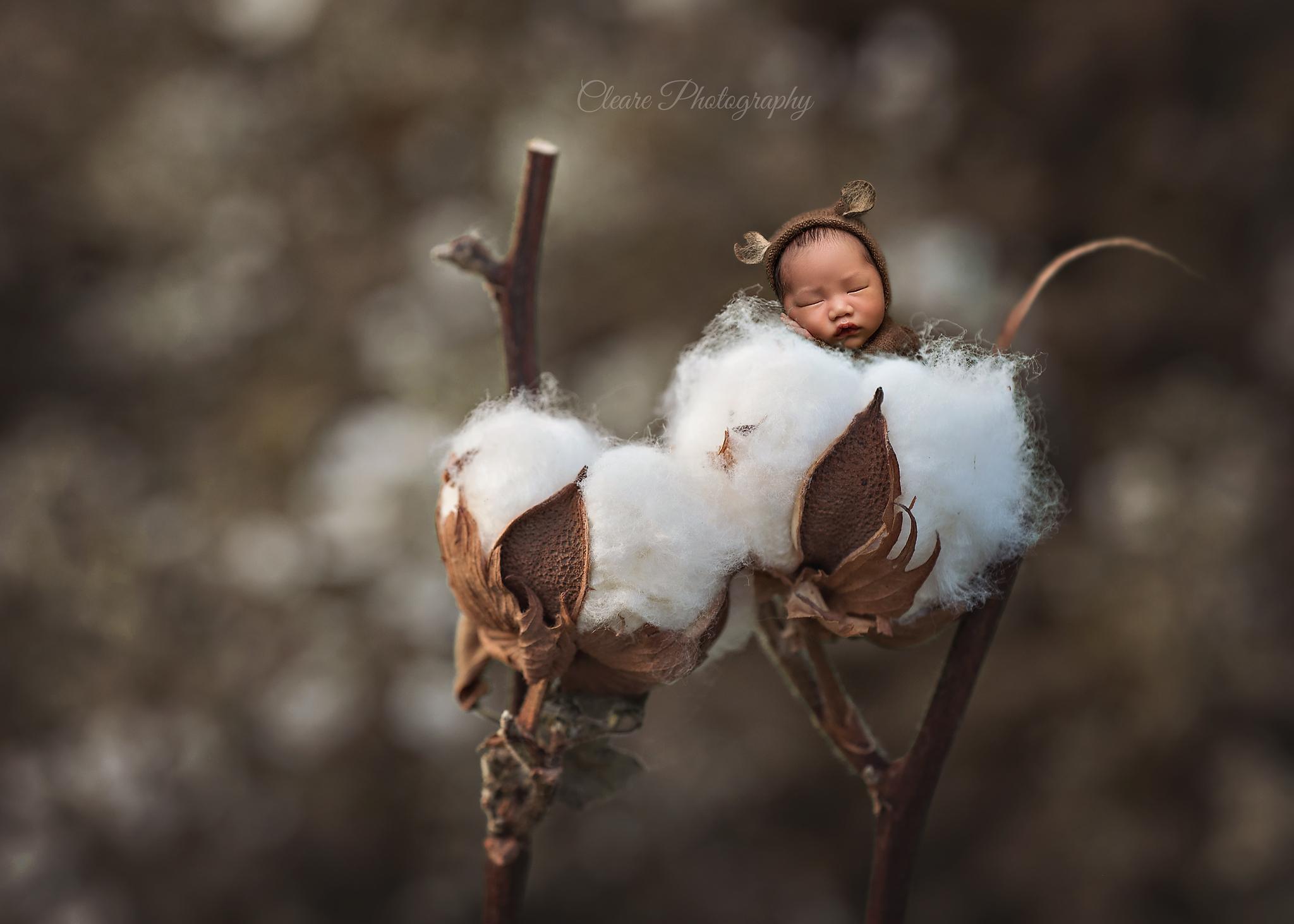 Mom Captures Magic of Life Through Newborn Photography