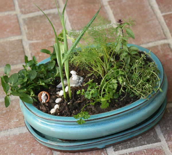 Easy to make, this whimsical herb garden is a perfect hostess gift.