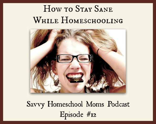 The How-to-Not-Go-Crazy-While-Homeschooling Episode