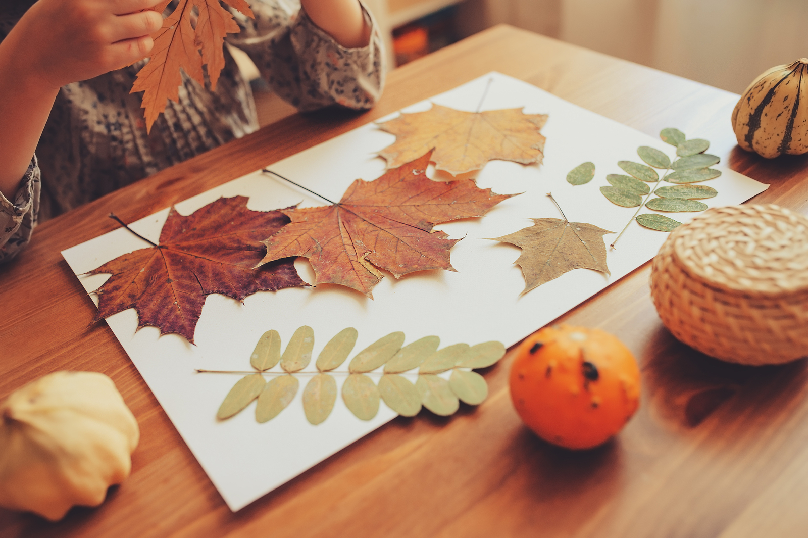 Leaves are the perfect medium to create beautiful projects and crafts.