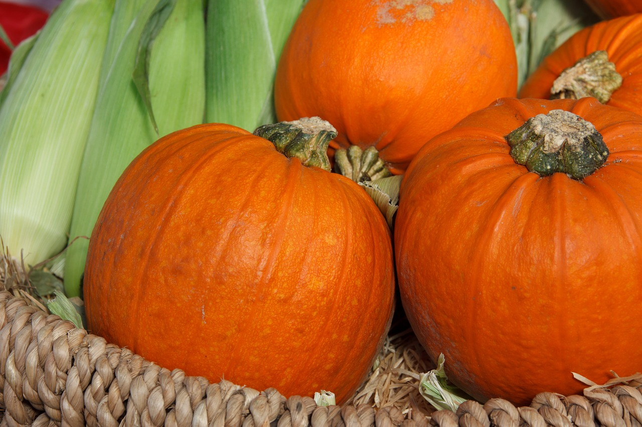 8 Tricks and Treats for a Naturally Inspired Halloween