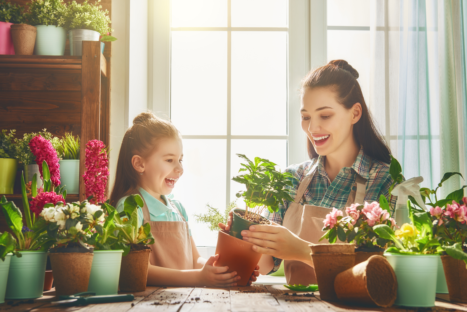 Your kids will love caring for these six houseplants.