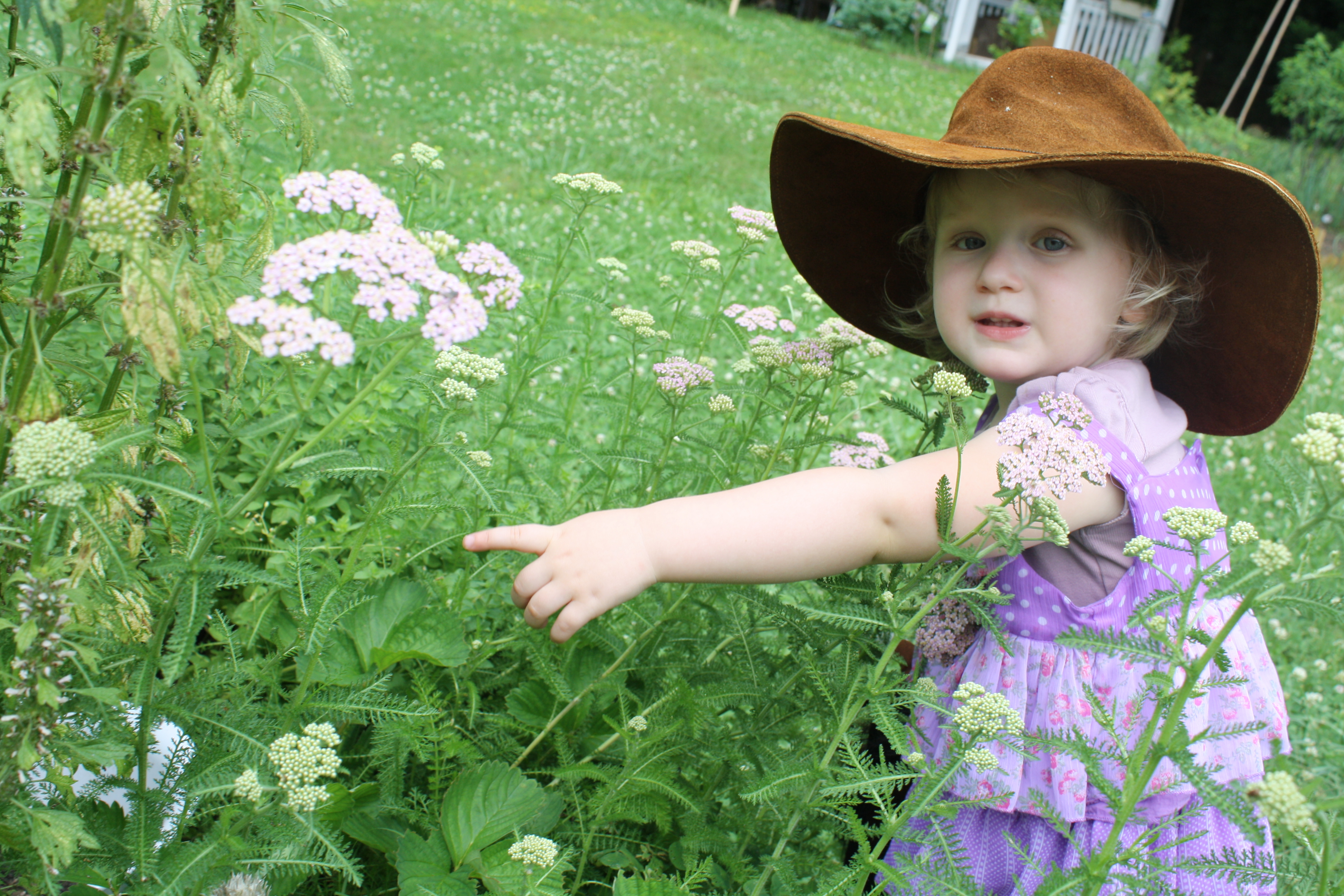 Top 10 Plants That Will Enchant Your Child