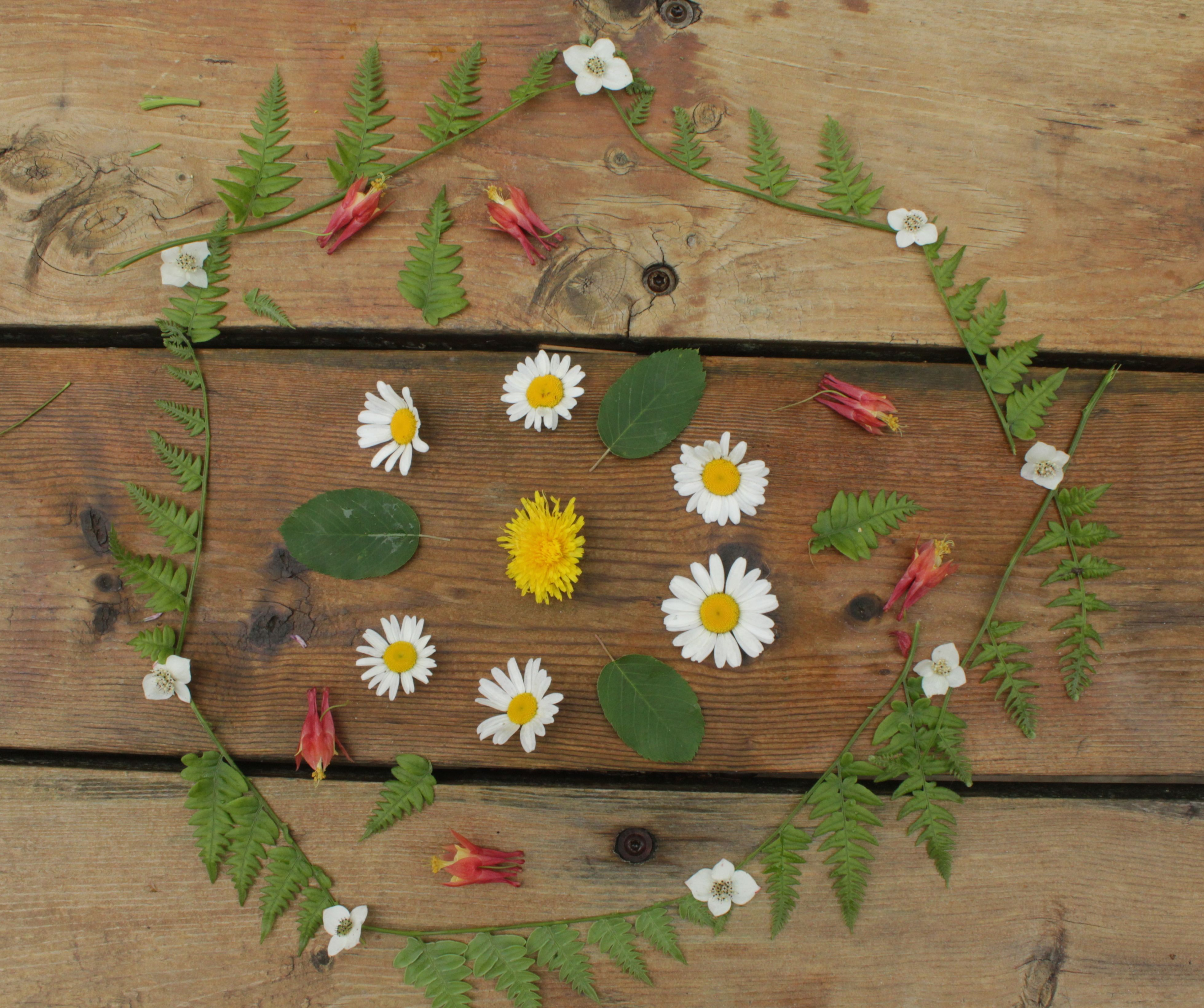 Creating Nature Mandalas With Children Step By Step Mothering
