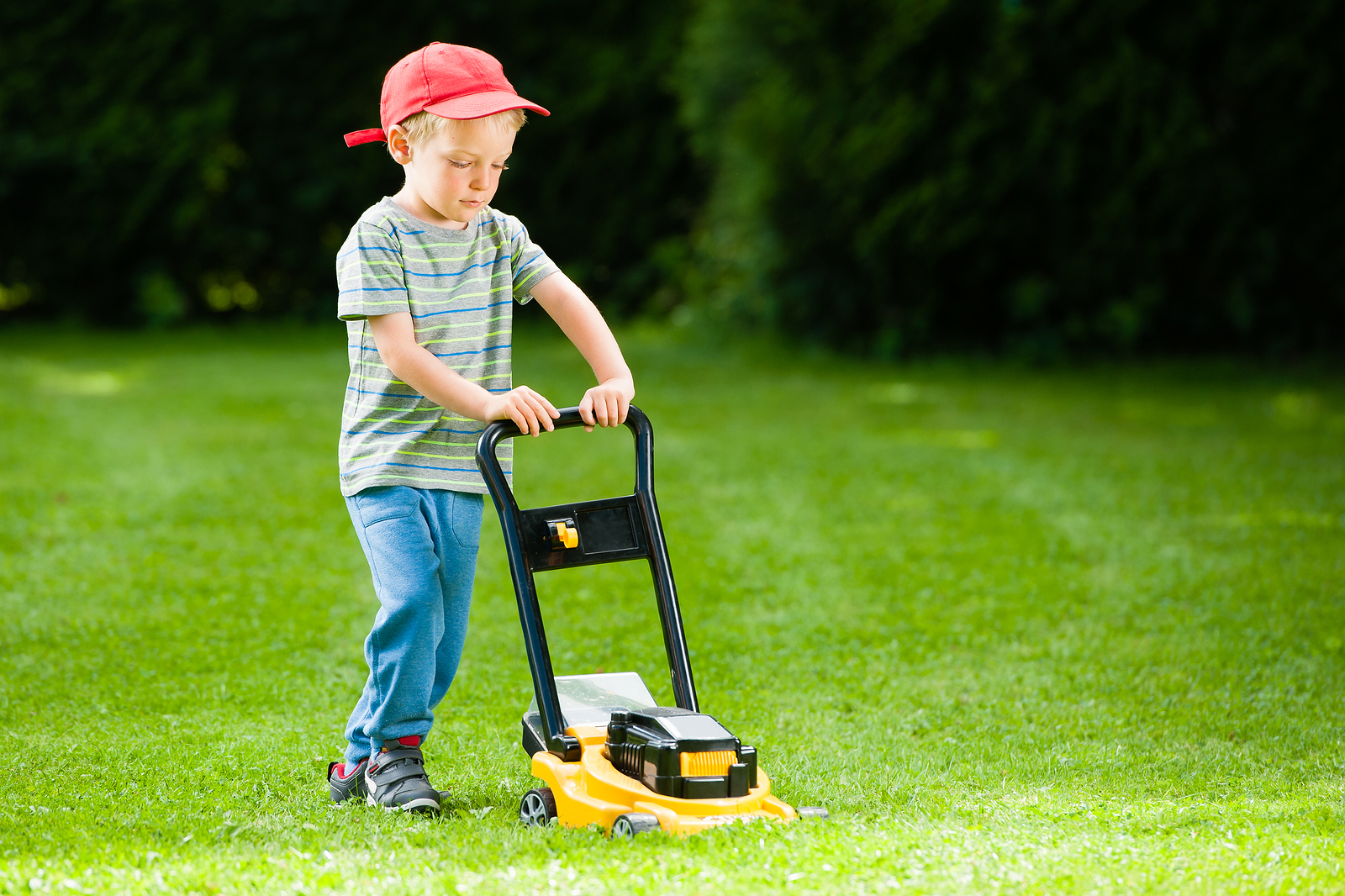 Study: Lawn-Mower Related Injuries In Children Too Common