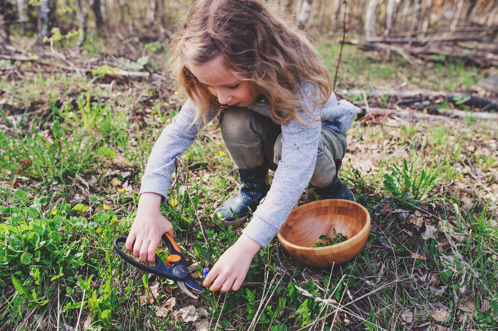 How Nature Journaling Benefits You and the Kids