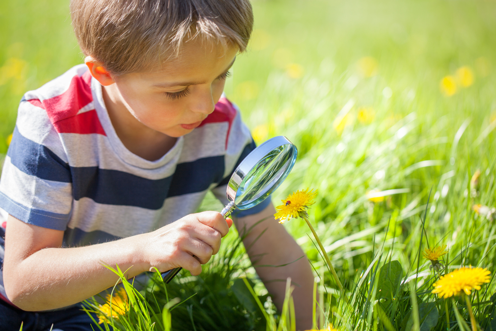 Here are 10 easy citizen science projects to get you started.