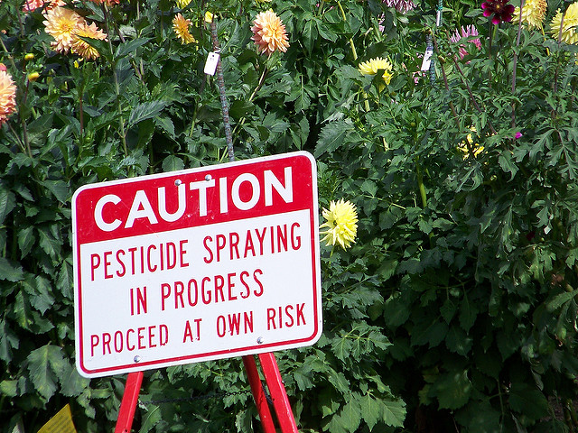 Pesticide Exposure Harms Children: How Can We Keep Them Safe?