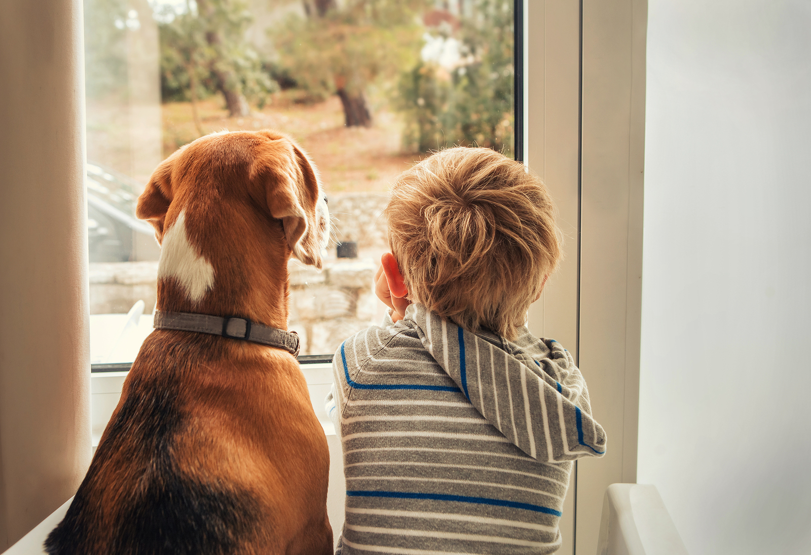 Helping children when a pet dies is not only important for their hearts, but for yours too.