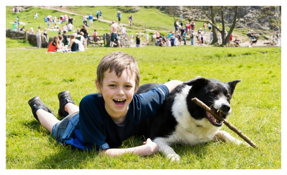 Pets help decrease family stress of autism
