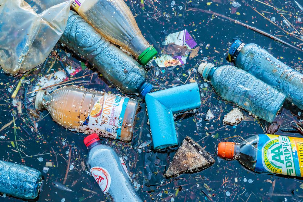 A mutant bacterium that eats plastic may advance recycling efforts.