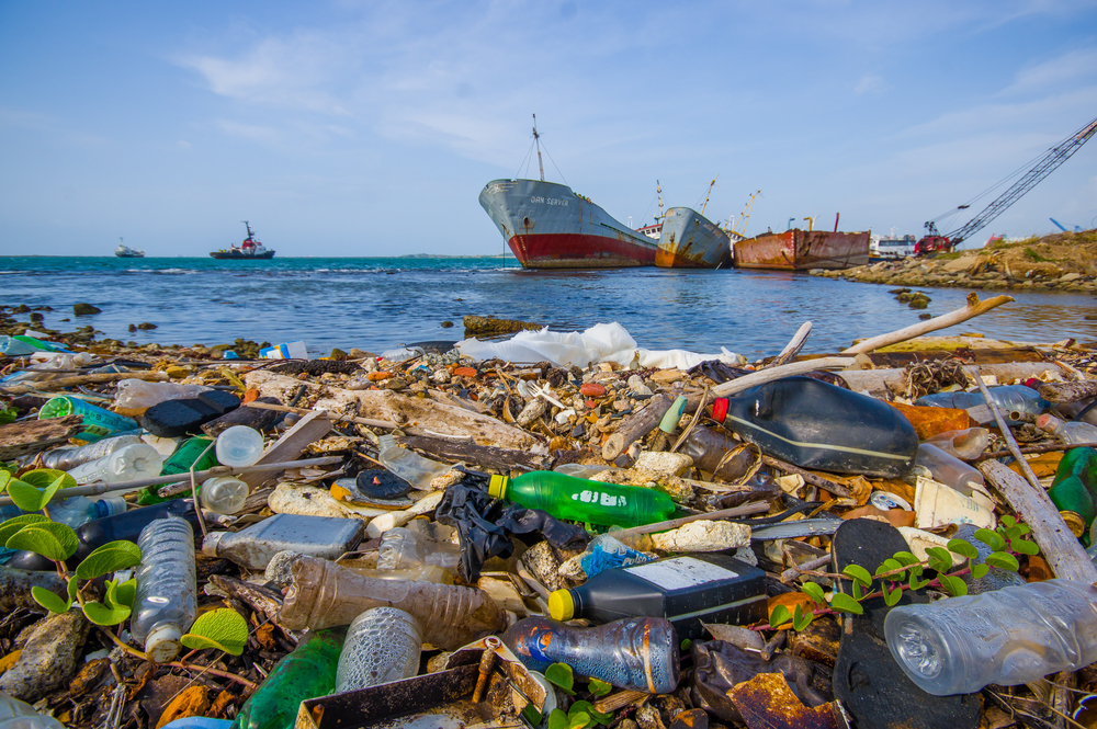 What is the world doing to save its oceans?