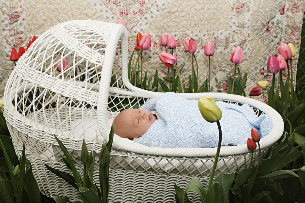 These are the 7 magical benefits of a Spring birth.