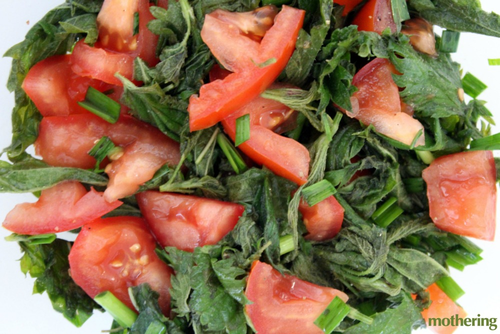 Here's how to make a fresh and painless nettle salad.