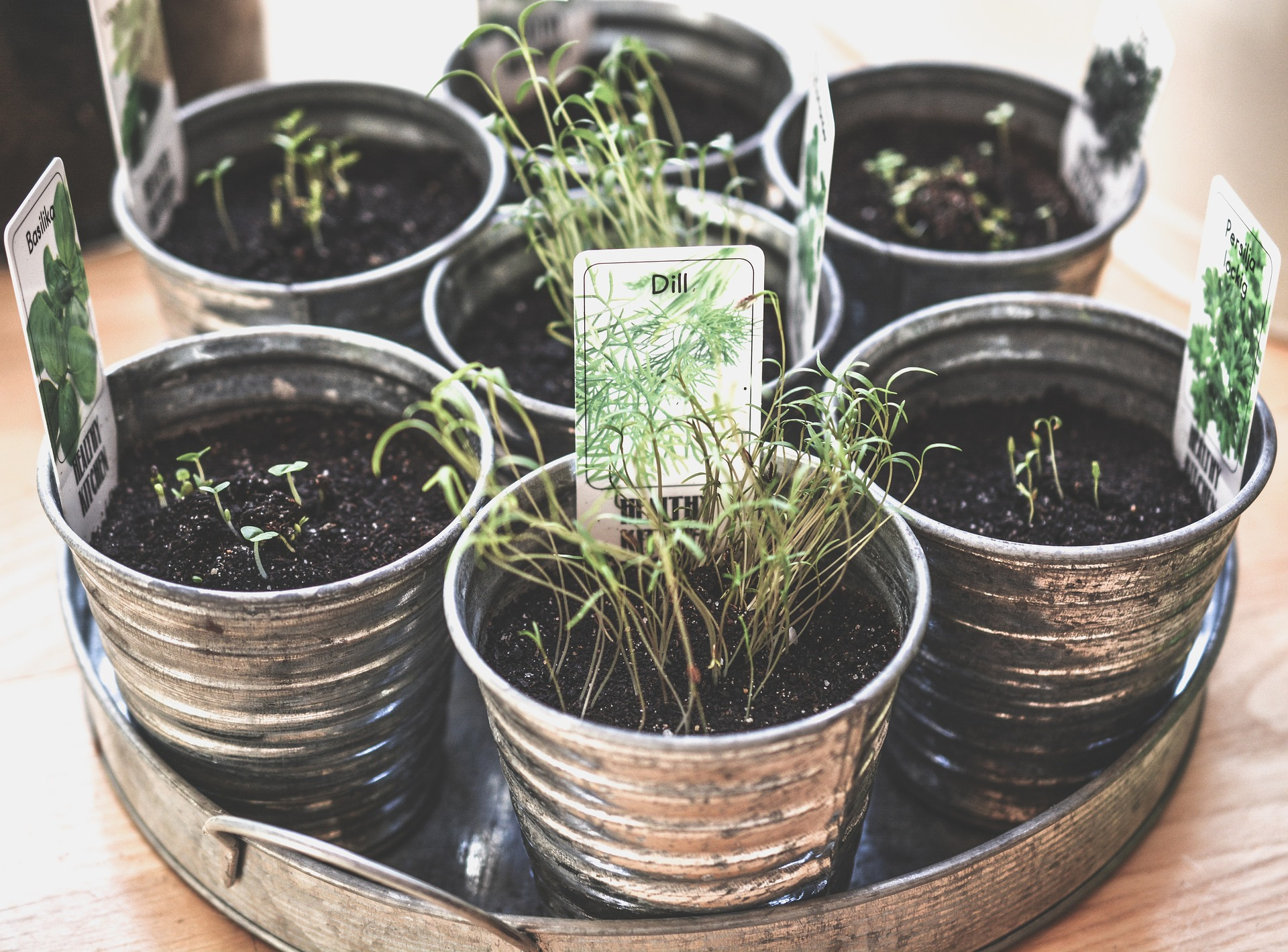 Herbs are the superheroes of the plant world. Here are 10 herbs can do it all.