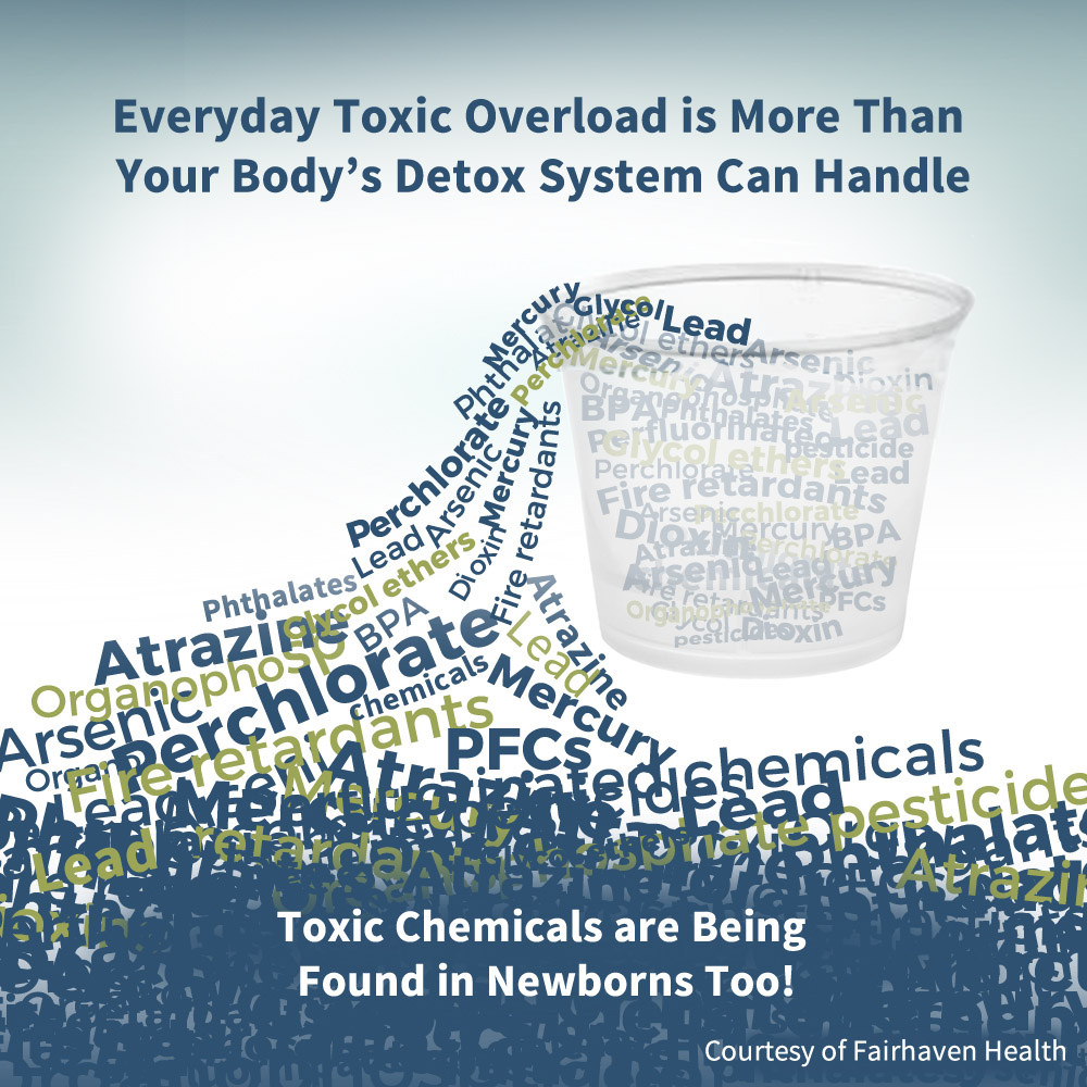 Toxic_Overload_EDCs
