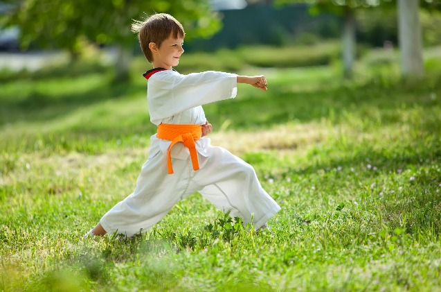 Martial Arts Are great For kids