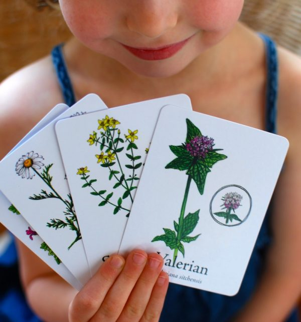 Wildcraft Game Makes Learning about Herbs Fun