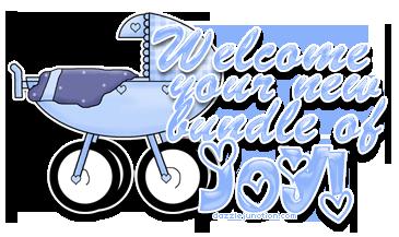 welcome-bundle-of-joy-boy.png