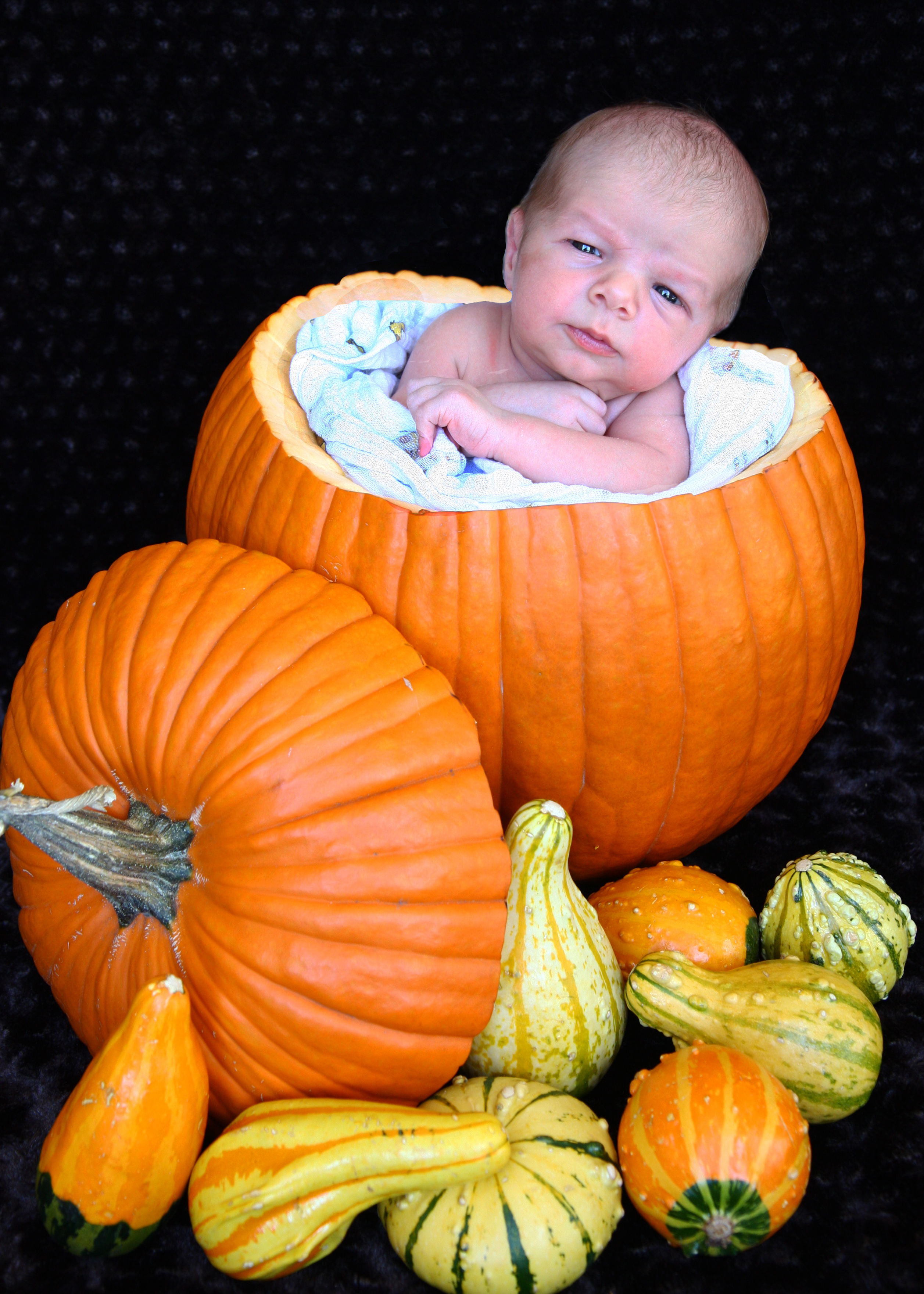 pumpkinbaby1.jpg