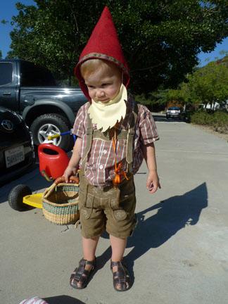 gnome.WEB.jpg