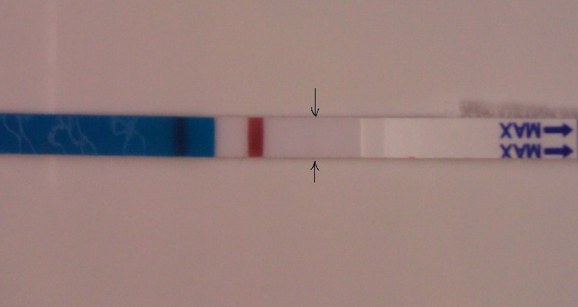 9dpo arrows.jpg
