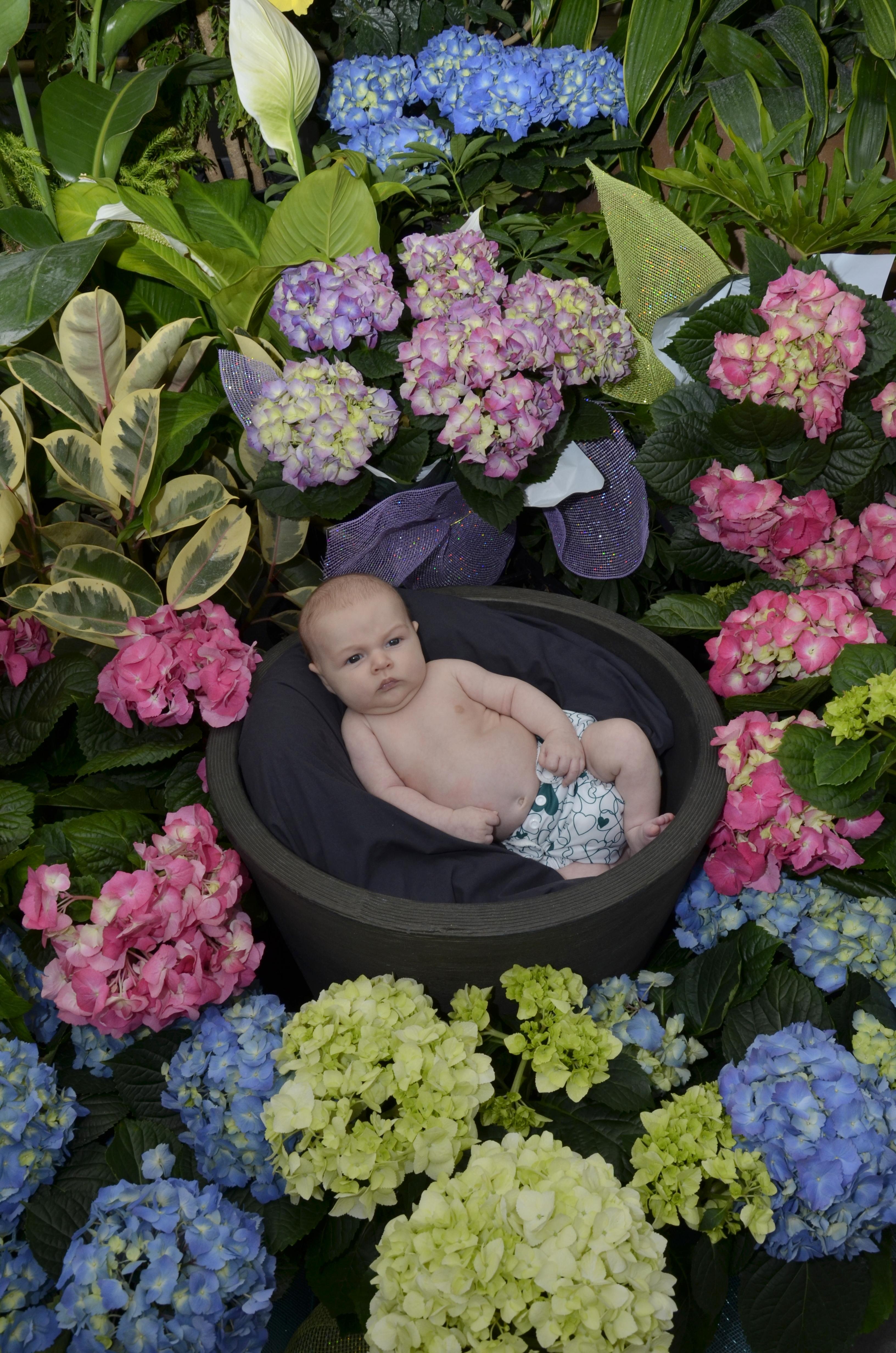 unhappy garden baby