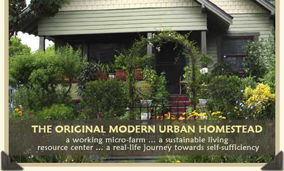 urban-homestead.jpg